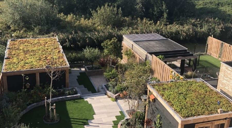 Er is in Rotterdam nog 321.000 m2 aan daken te vergroenen